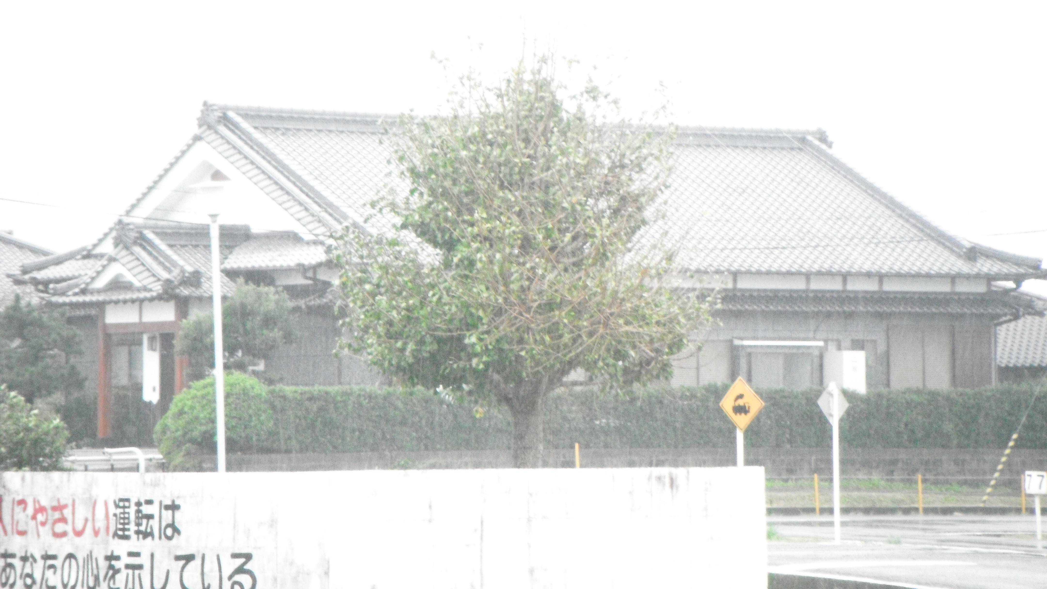 DSCF0568